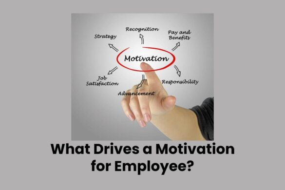 What Drives a Motivation for Employee?