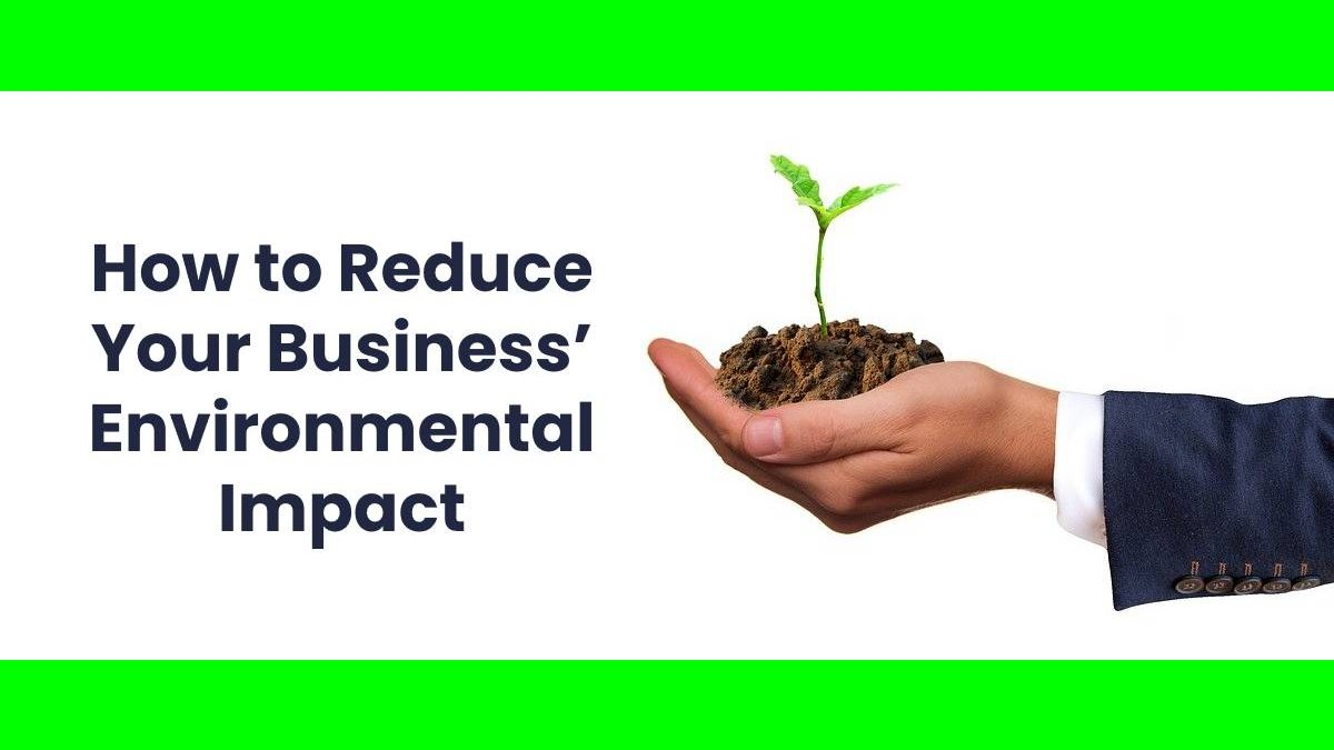 How to Reduce Your Business' Environmental Impact